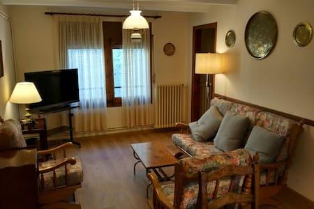 Apartamento en el centro de Alp - Appartement
