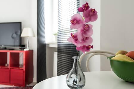 Homey apartment - Walking distance to the old town - Düsseldorf - Leilighet