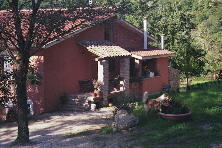 FarmHouse in the countryside of Terra Sabina