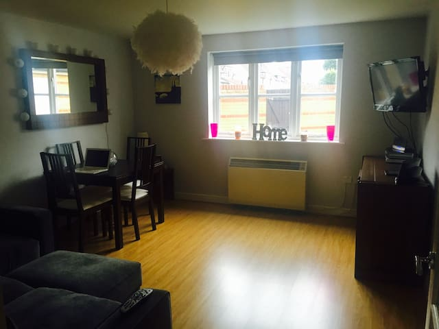 Double bedroom in a ground floor, 2 bed flat - London - Apartment