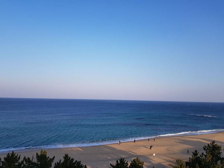 [SEA THE  MOON] #속초여행🧳 #바다뷰🌊 #고속터미널2분👍#빔프로젝트🎞