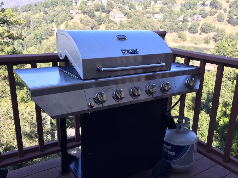 BBQ grill for your grilling pleasure
