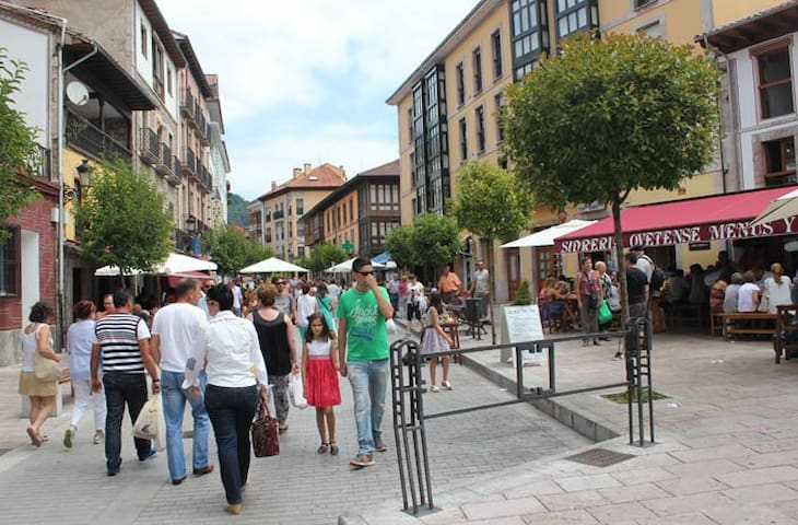 Apartmnt hight street Cangas d Onis. Great Locatio - Cangas de Onís - Byt