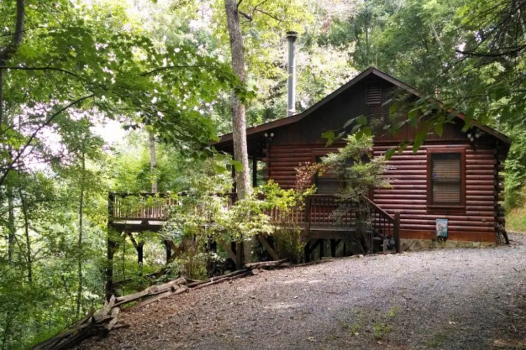 Bearly connected cabins for rent in ellijay georgia for Ellijay cabins for rent by owner