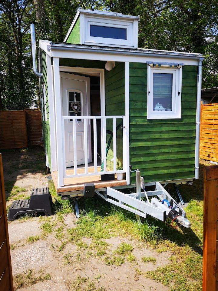 Tinyhouse 2 Varel/Dangast