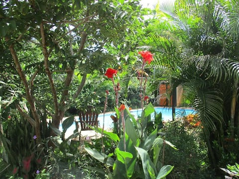 Cabina Jungle