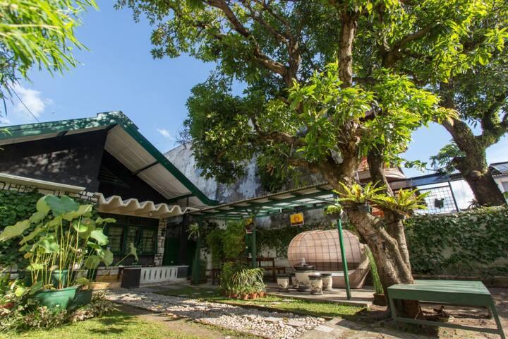 Mango Tree DiPudjo Bunk Bed in Mixed Dorm