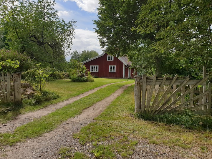 Tranquillity close to lake Vänern and the nature