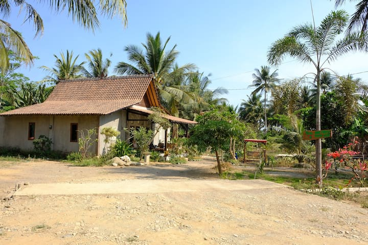 Java Turtle Homestay