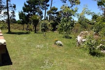 Hidden Estuary Cabin Mangawhai Village