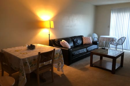 Overland Park: Entire 1 bedroom apartment