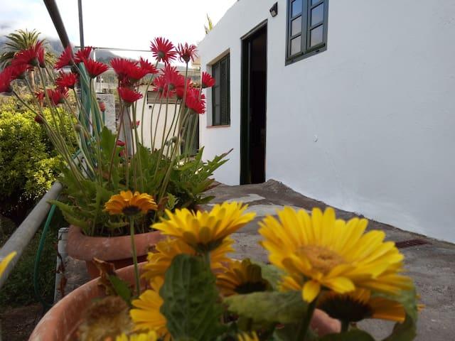 Bienvenidos al centro de la Palma, mucha paz