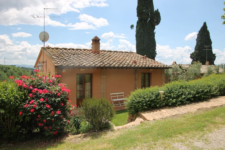 Converted barn in Tuscan olive grove