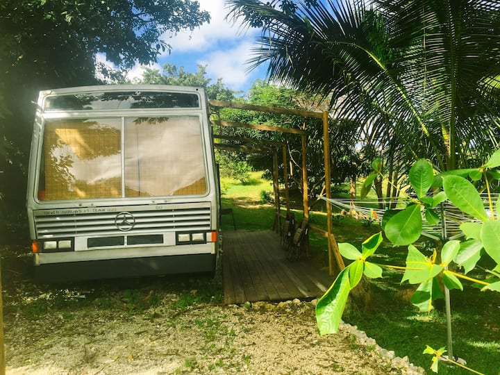 Eco StayBus, 'Glamping in Paradise'