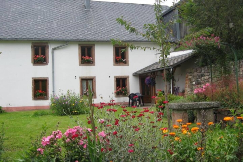 L'entrée du Gite et son jardin