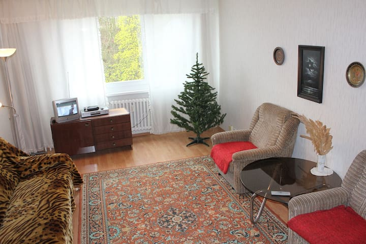 Apartments 3+kk in spa area. - Teplice - Appartement