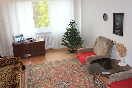 Apartments 3+kk in spa area. - Teplice - 公寓
