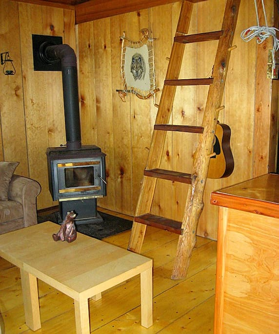 Wood burning stove in living room