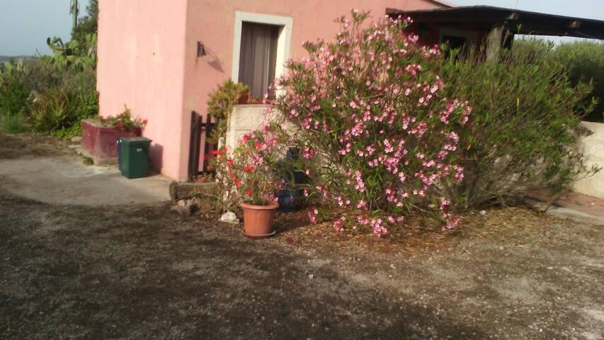 Sorpresa tra Campagna e Mare - La Pedraia - บ้าน