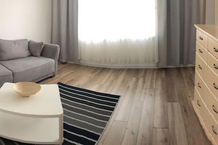 Cozy apartment near the centre.
