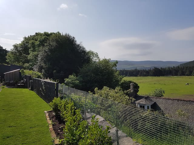 Willowbank Lodge - Loch Morlich room