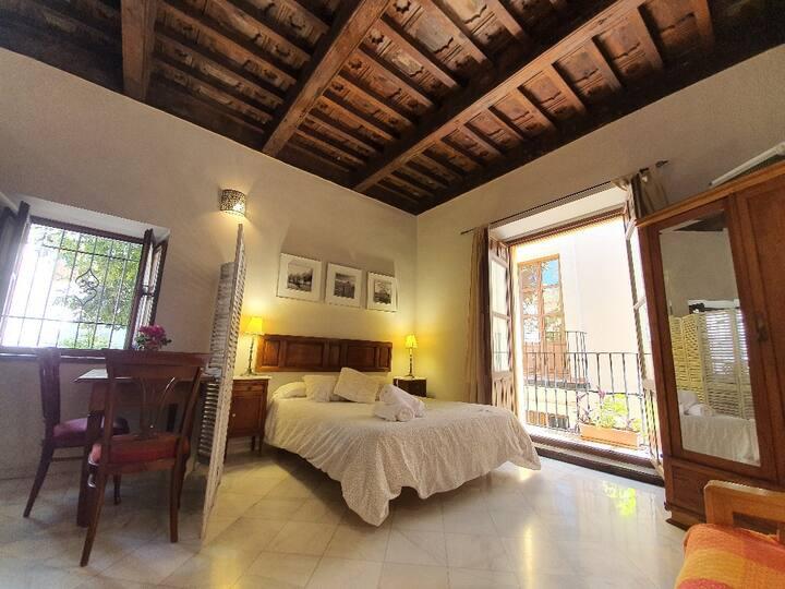 "Palace Vista Alhambra ""Albaicin"" Apto 4 WIFI"