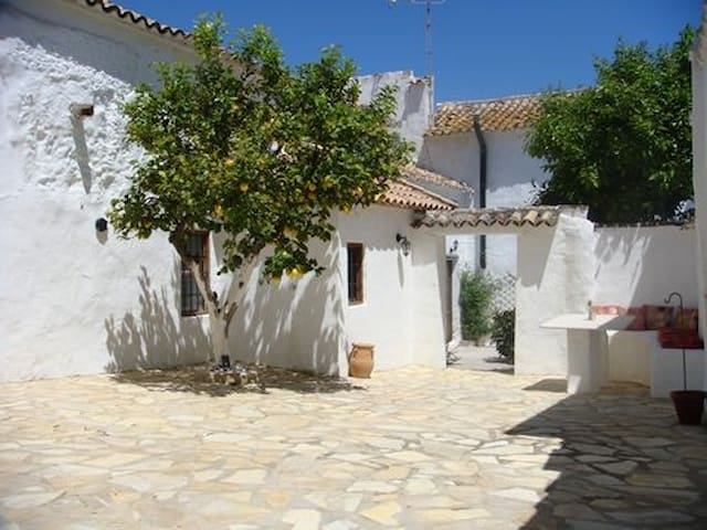 Casa Levana - Málaga - Hus