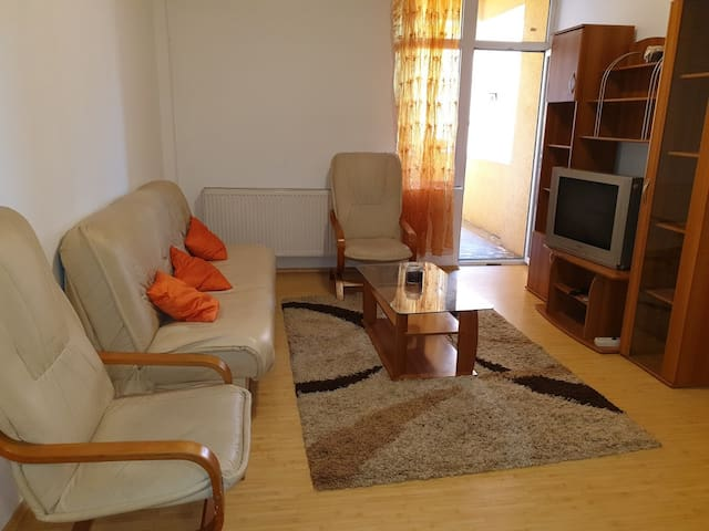 One Bedroom Apartment 5 mins Close to Downtown