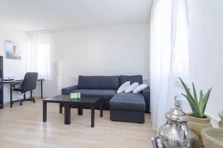 Céntrico Estudio-Loft, bonito y luminoso - Zürich - Appartement