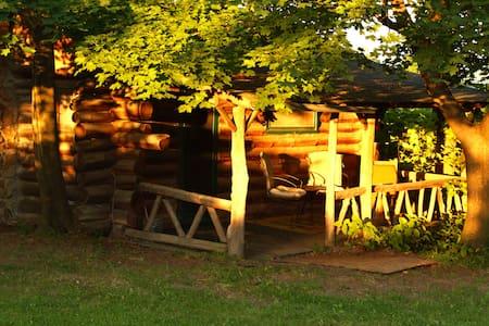 Rustic Log Cabins - Hector - Kisház