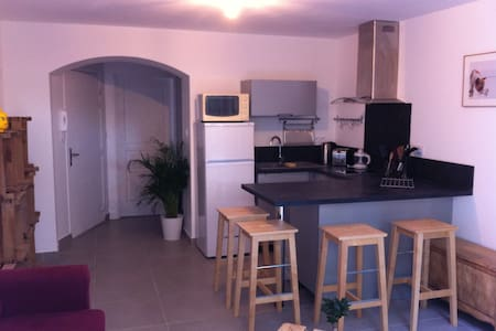 L'Escale Albigeoise - Albi - Διαμέρισμα