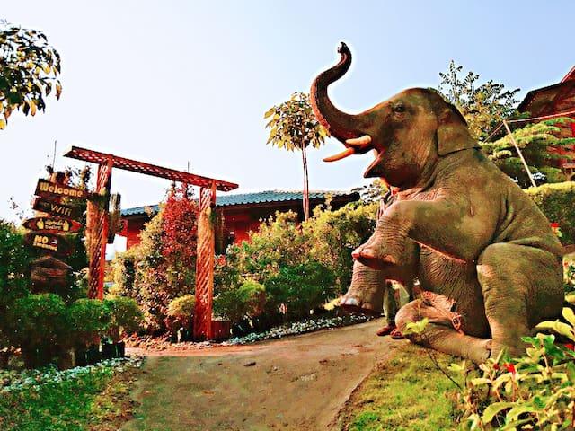 大象民宿一号  Maewang  Gold elephant park