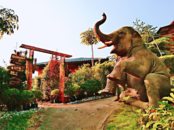 大象民宿四号  Maewang Gold elephant park