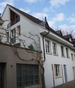 Über den Dächern der historischen Altstadt - Rheinfelden - Apartmen