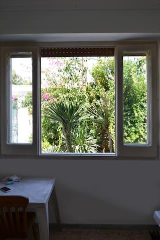 Camera 1 - vista dalla finestra