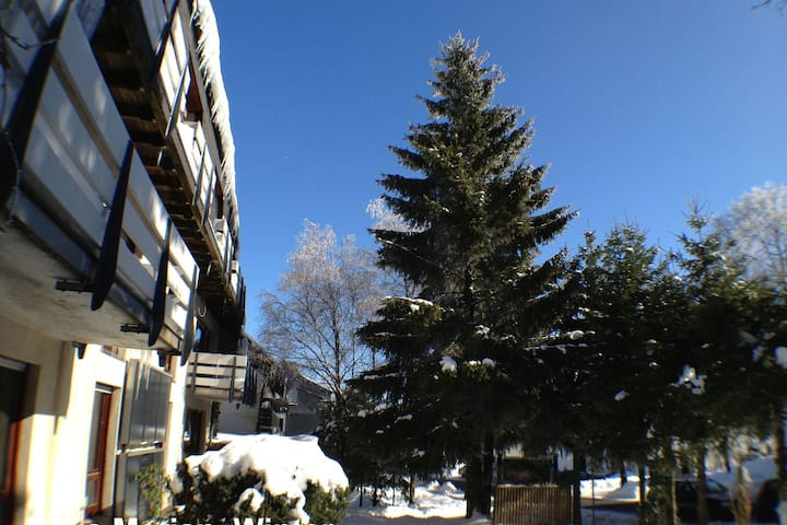 Large apartment in the famous town of Winterberg with a south-facing terrace and garden house