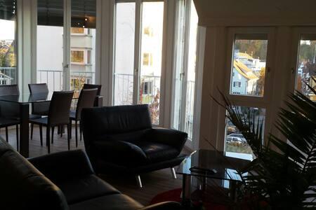 moderne zentral gelegne 3-Zimmer Wohnung - Tübingen - Wohnung