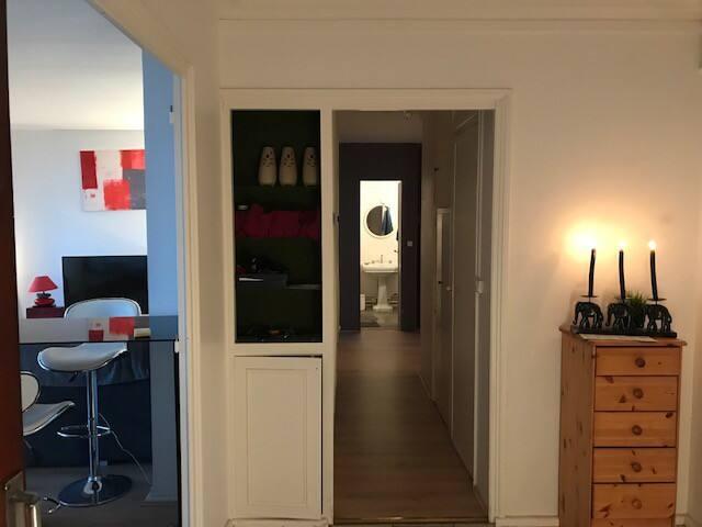 L'entrée de l'appartement a droite une chambre a gauche le salon