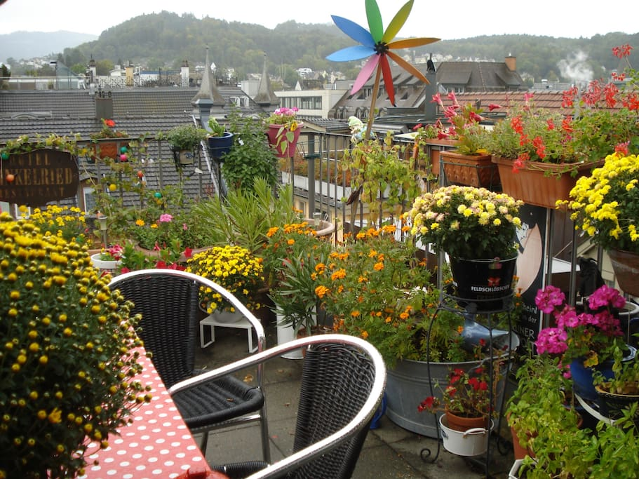 On the rooftops, flowers in summertime.....