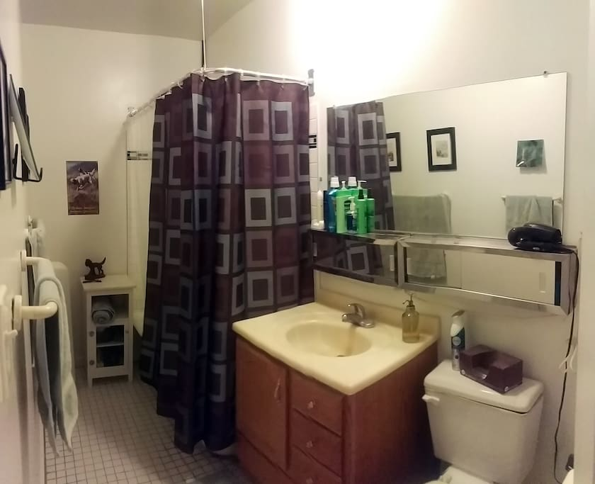 Large bathroom with new tile in shower