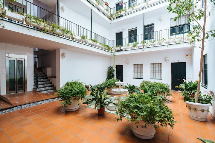 Zonas comunes: patio interior con ascensor