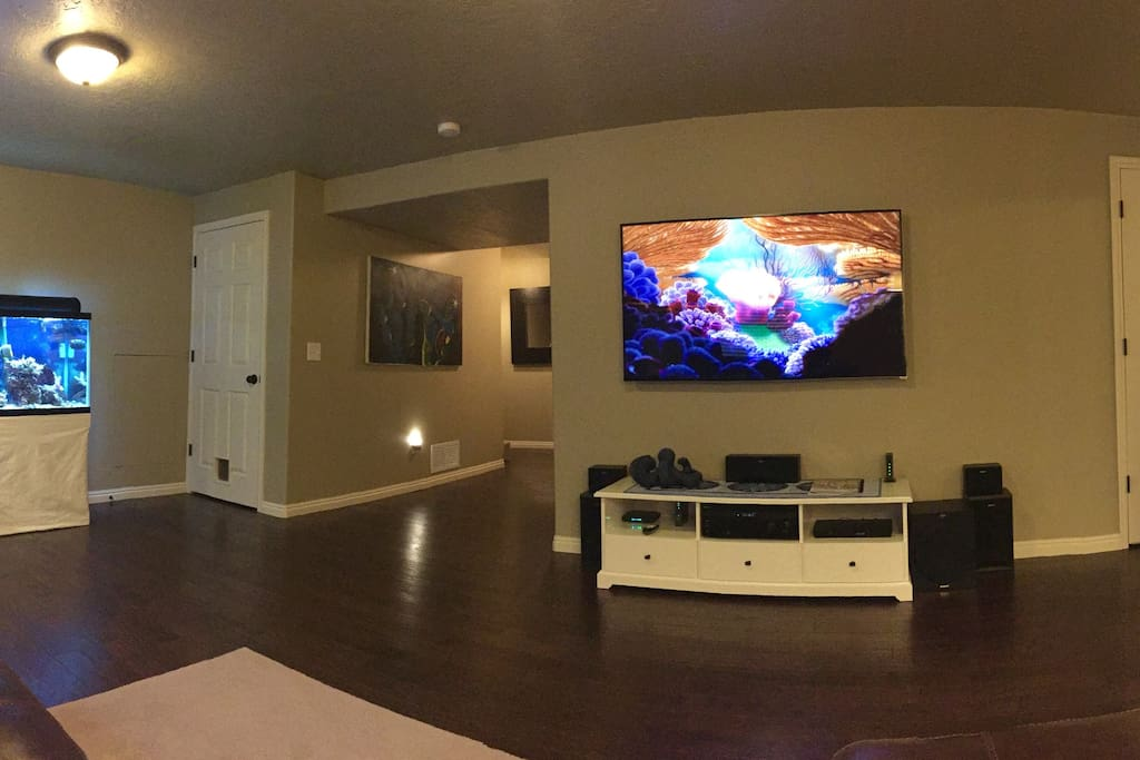 65 inch HDTV with optional 3D.