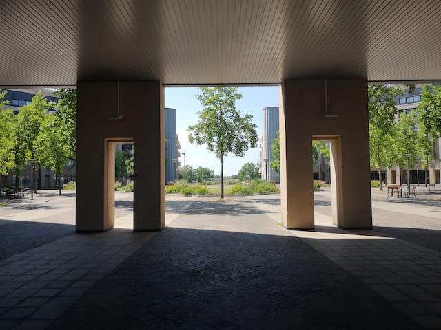 Studio proche Loire & transports (tram, bus, vélo)