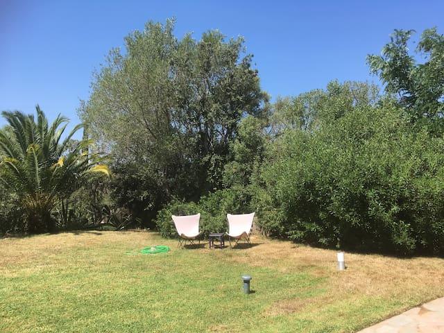 Jardin bien entretenu avec jolis arbres, chênes, oliviers, arbousiers, palmiers, cactus... et plantes, lauriers roses, lavandes....magnifiques bougainvilliers au calme et sans vis à vis