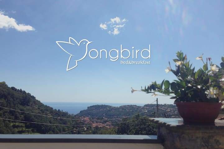 Songbird Bed and Breakfast