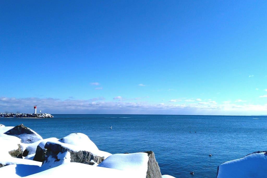 oakville port winter