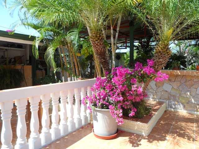 La Casa de Elba - Paso Canoas - House