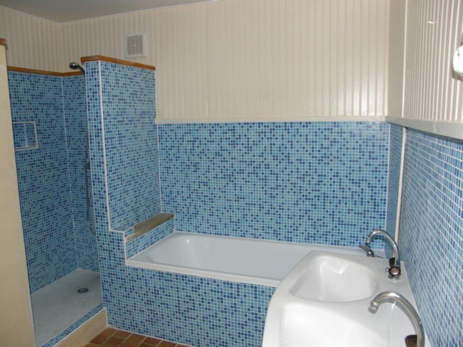 La salle de bains avec une baignoire et une douche