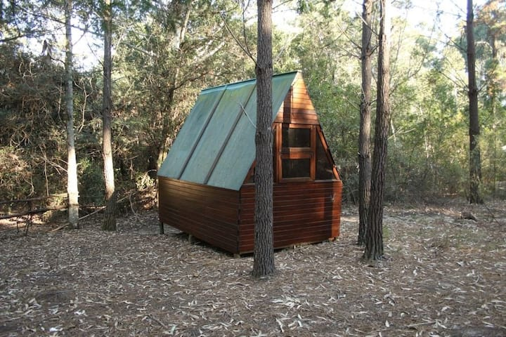 Pachamama Forest Cabin 1