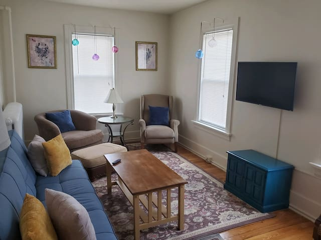 Free Wi-Fi and Roku Smart TV. Guests can access their own accounts with Netflix, Amazon Prime, Disney, YouTube, etc. The blue sofa turns down to a full-size bed. The sofa does not have arms, which makes the bed suitable for two average-sized adults.